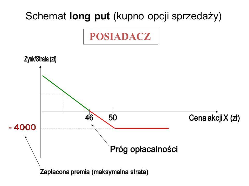 Schemat long put (kupno opcji sprzedaży)