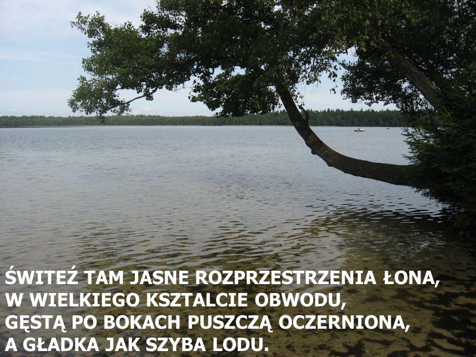 ŚWITEŹ TAM JASNE ROZPRZESTRZENIA ŁONA,