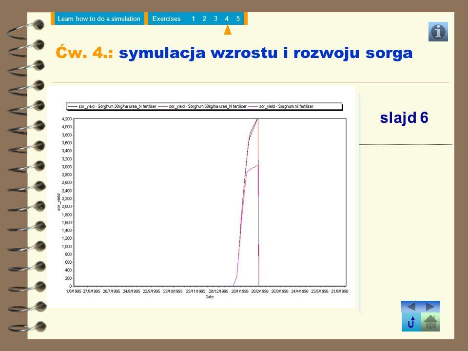 Ćw. 4.: symulacja wzrostu i rozwoju sorga