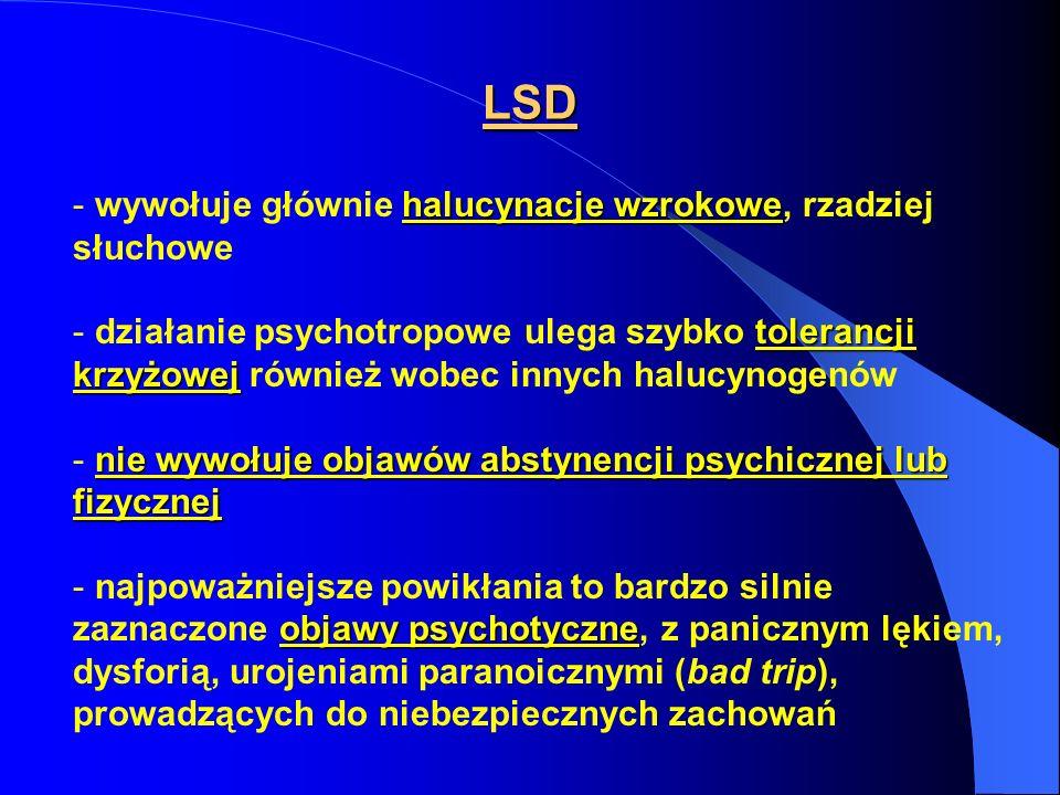 LSD wywołuje głównie halucynacje wzrokowe, rzadziej słuchowe
