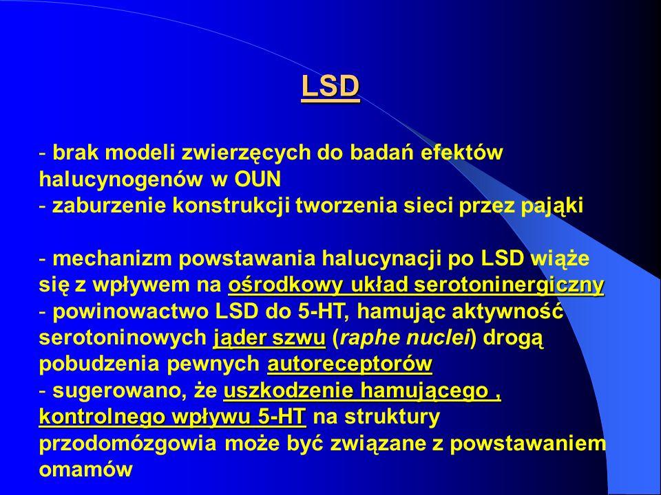 LSD brak modeli zwierzęcych do badań efektów halucynogenów w OUN