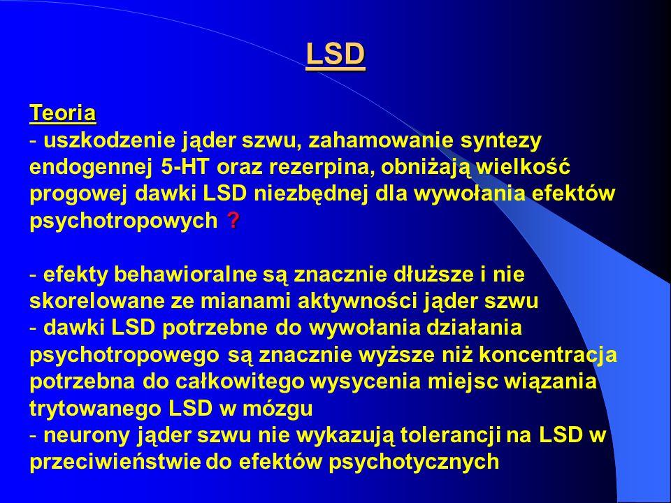 LSD Teoria.
