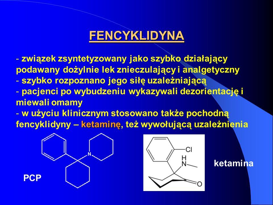 FENCYKLIDYNA związek zsyntetyzowany jako szybko działający podawany dożylnie lek znieczulający i analgetyczny.