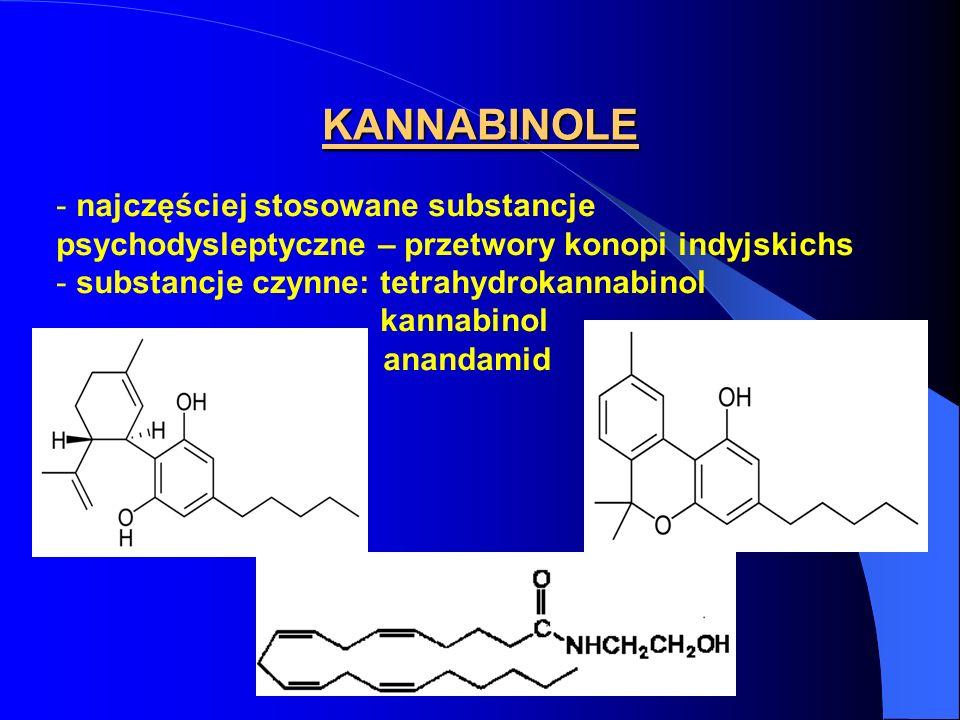 KANNABINOLE najczęściej stosowane substancje psychodysleptyczne – przetwory konopi indyjskichs. substancje czynne: tetrahydrokannabinol.