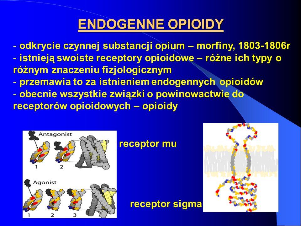 ENDOGENNE OPIOIDY odkrycie czynnej substancji opium – morfiny, 1803-1806r.