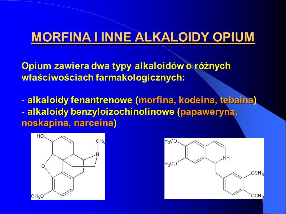 MORFINA I INNE ALKALOIDY OPIUM