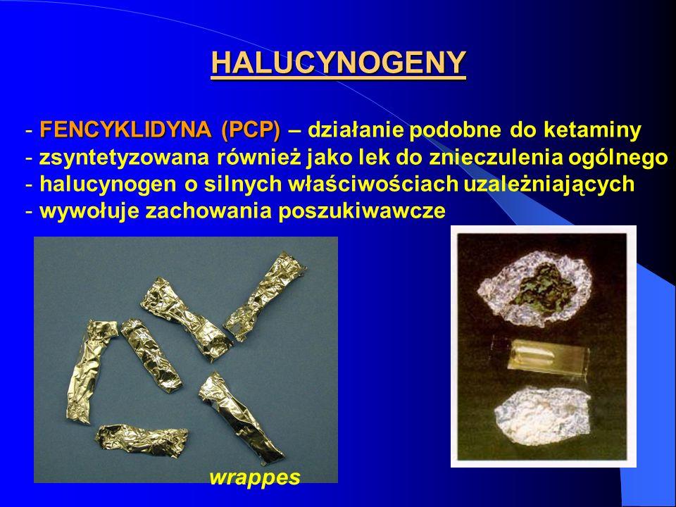 HALUCYNOGENY FENCYKLIDYNA (PCP) – działanie podobne do ketaminy