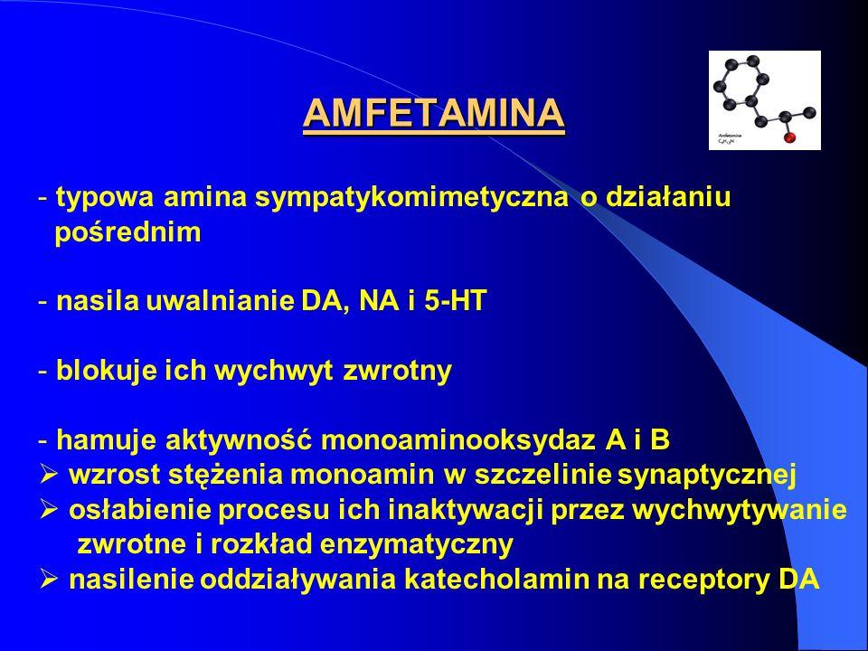 AMFETAMINA typowa amina sympatykomimetyczna o działaniu pośrednim