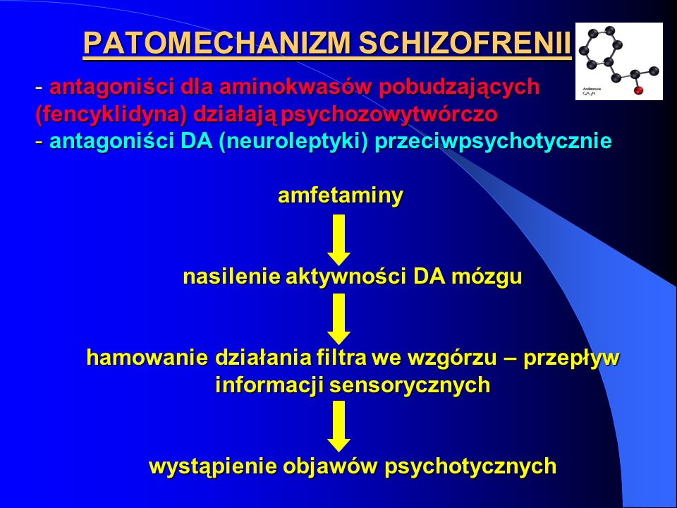 PATOMECHANIZM SCHIZOFRENII