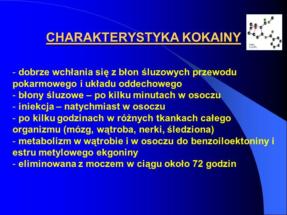 CHARAKTERYSTYKA KOKAINY