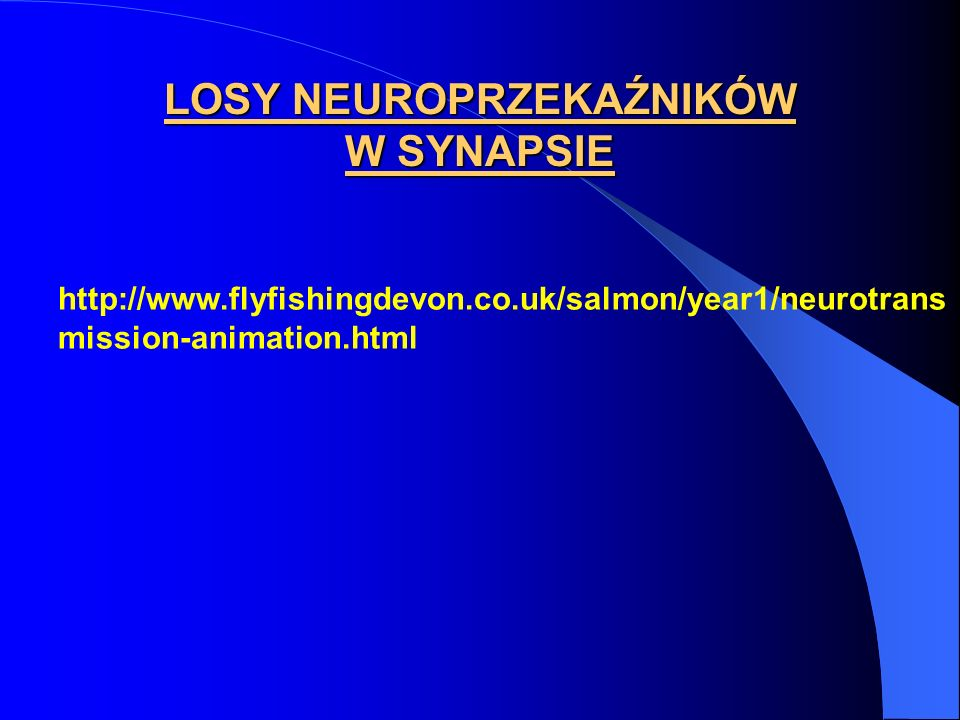 LOSY NEUROPRZEKAŹNIKÓW W SYNAPSIE
