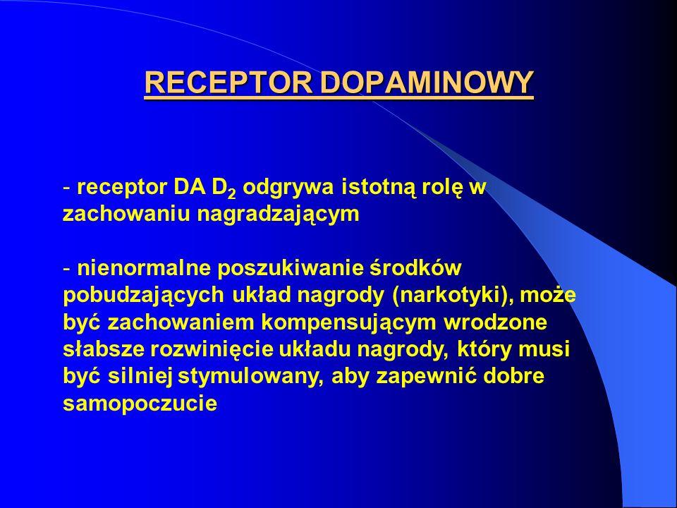 RECEPTOR DOPAMINOWY receptor DA D2 odgrywa istotną rolę w zachowaniu nagradzającym. nienormalne poszukiwanie środków.
