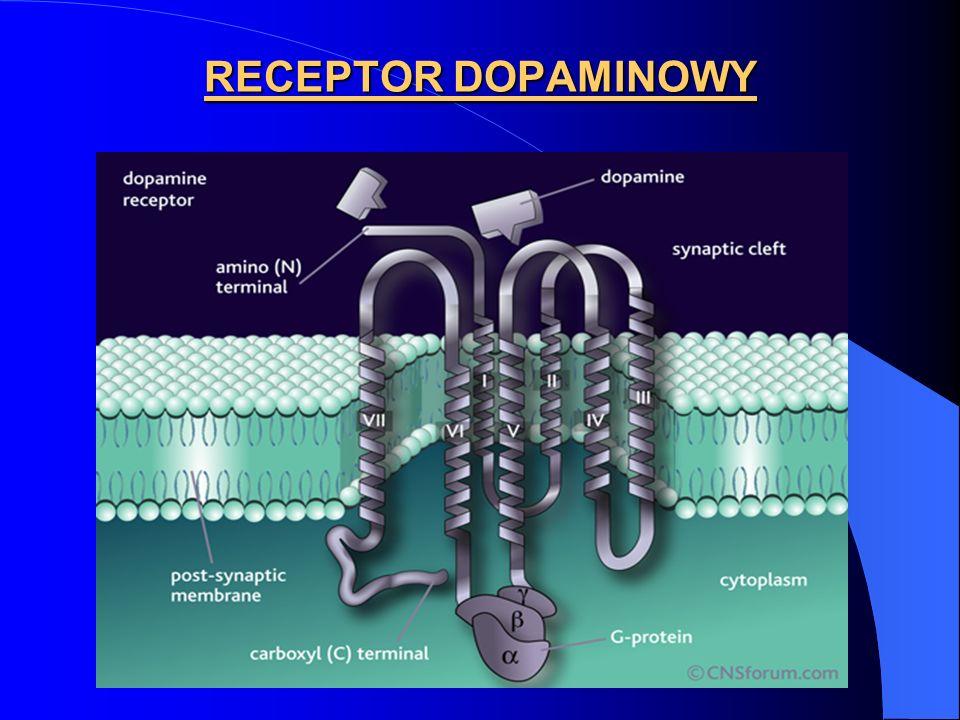 RECEPTOR DOPAMINOWY