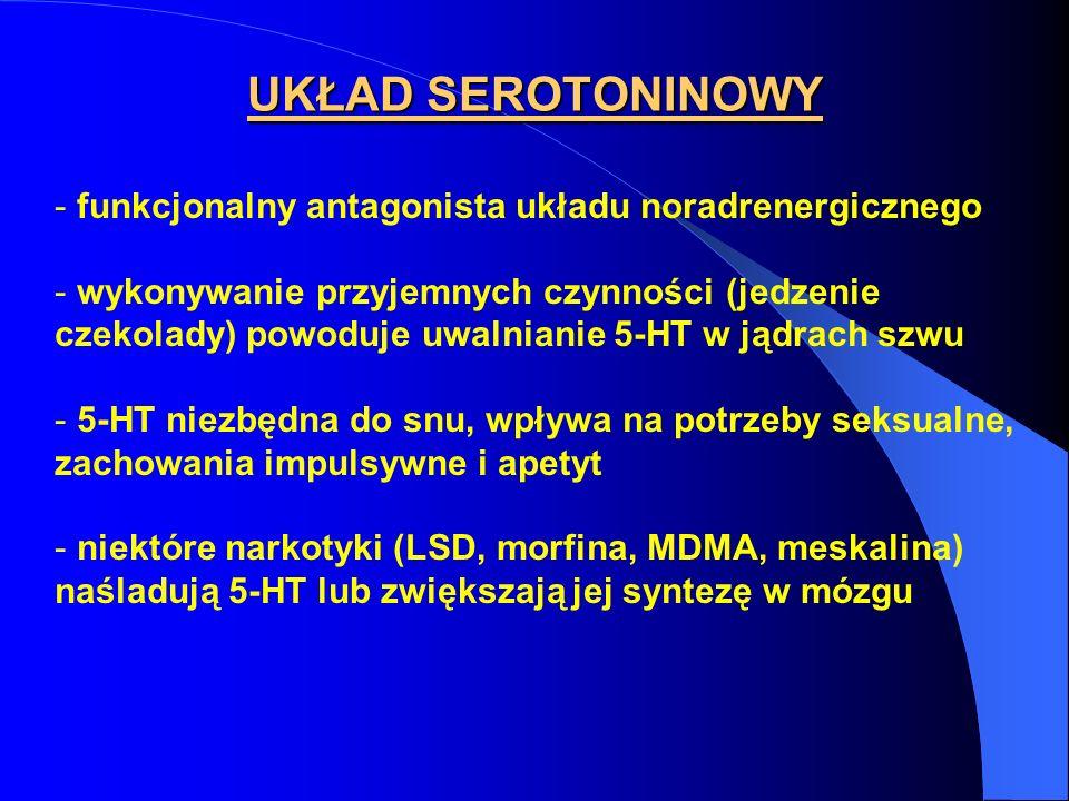 UKŁAD SEROTONINOWY funkcjonalny antagonista układu noradrenergicznego