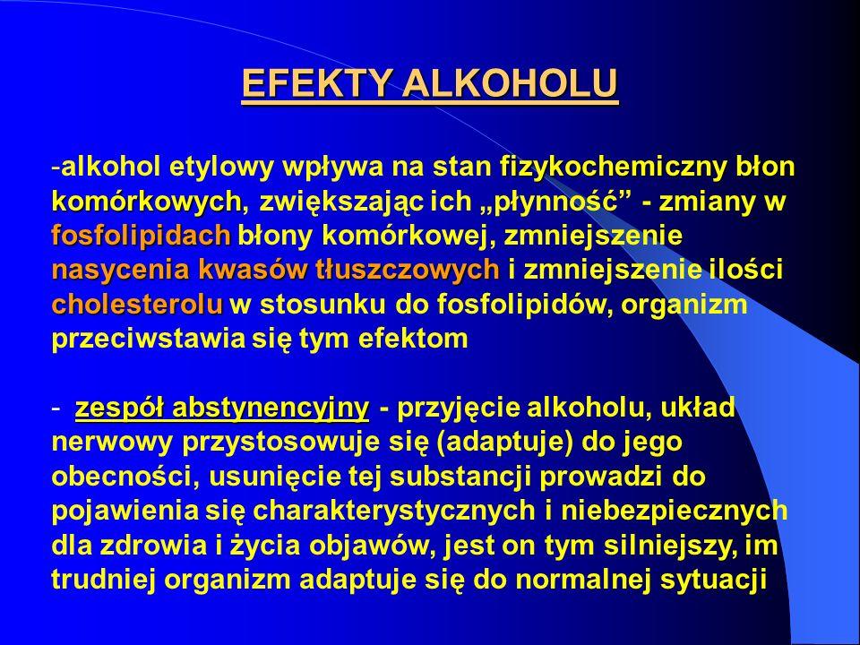 EFEKTY ALKOHOLU