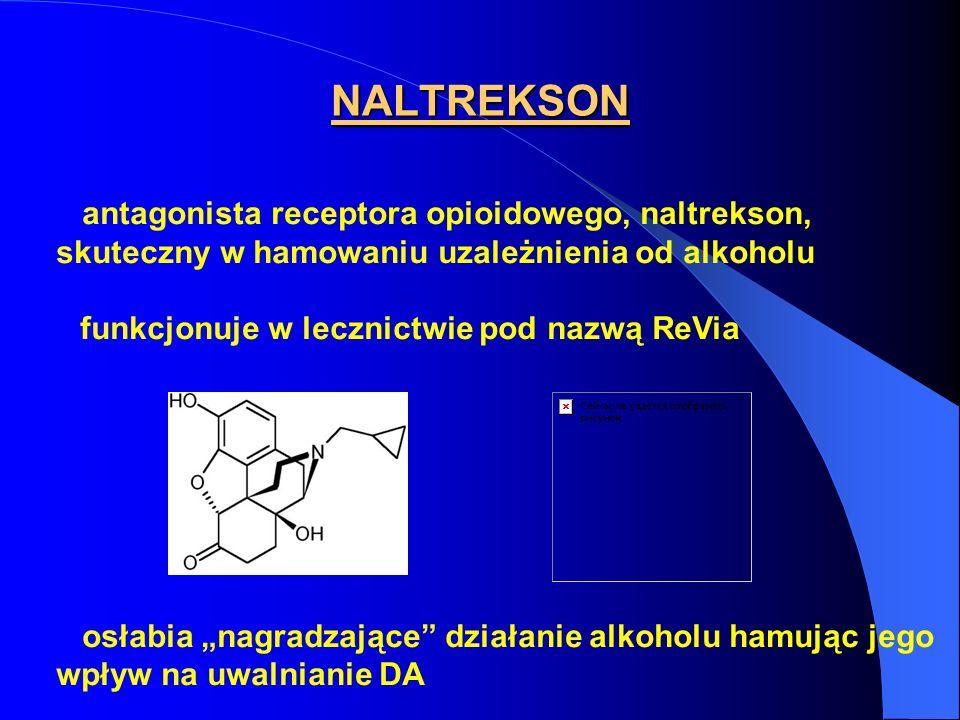 NALTREKSON antagonista receptora opioidowego, naltrekson, skuteczny w hamowaniu uzależnienia od alkoholu.