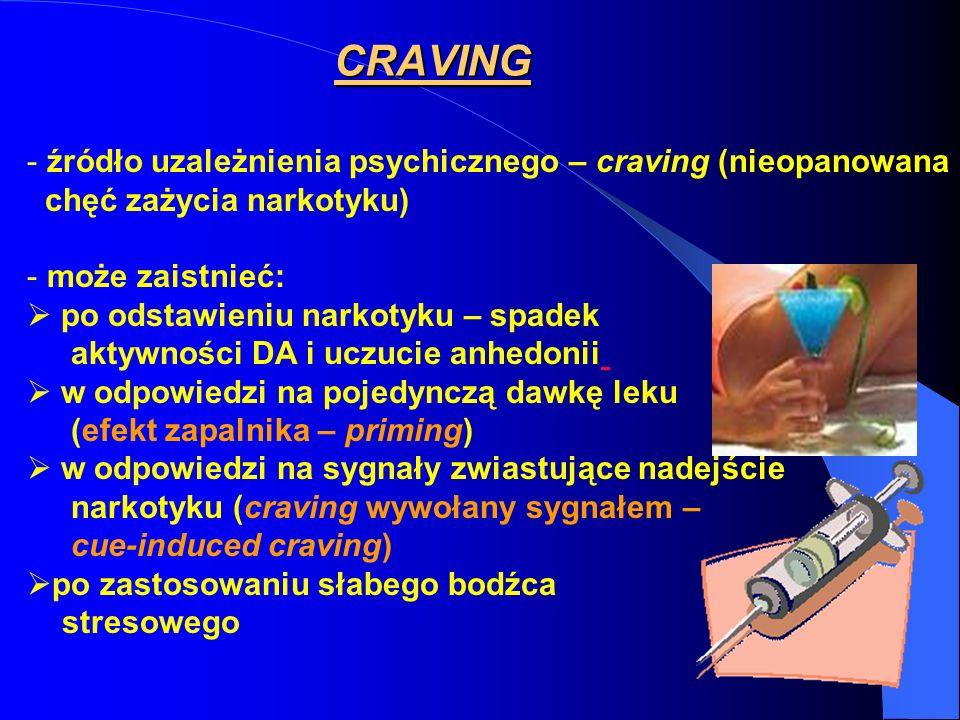 CRAVING źródło uzależnienia psychicznego – craving (nieopanowana