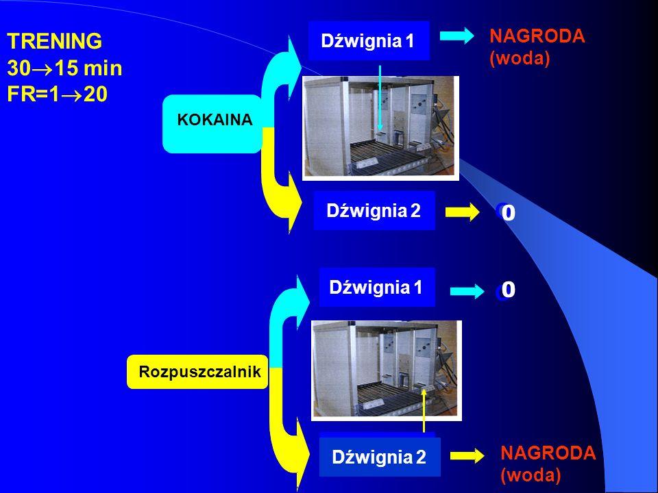 TRENING 3015 min FR=120 O O NAGRODA Dźwignia 1 (woda) Dźwignia 2