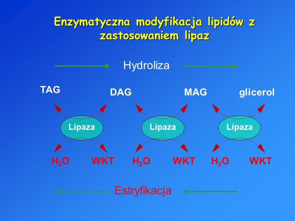 Enzymatyczna modyfikacja lipidów z zastosowaniem lipaz
