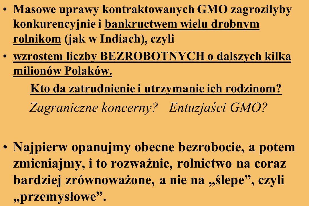 Masowe uprawy kontraktowanych GMO zagroziłyby konkurencyjnie i bankructwem wielu drobnym rolnikom (jak w Indiach), czyli