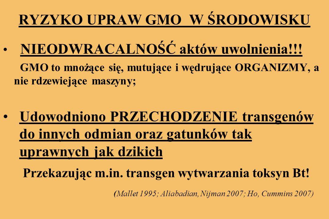 RYZYKO UPRAW GMO W ŚRODOWISKU