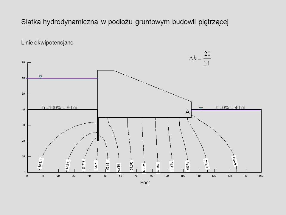 Siatka hydrodynamiczna w podłożu gruntowym budowli piętrzącej