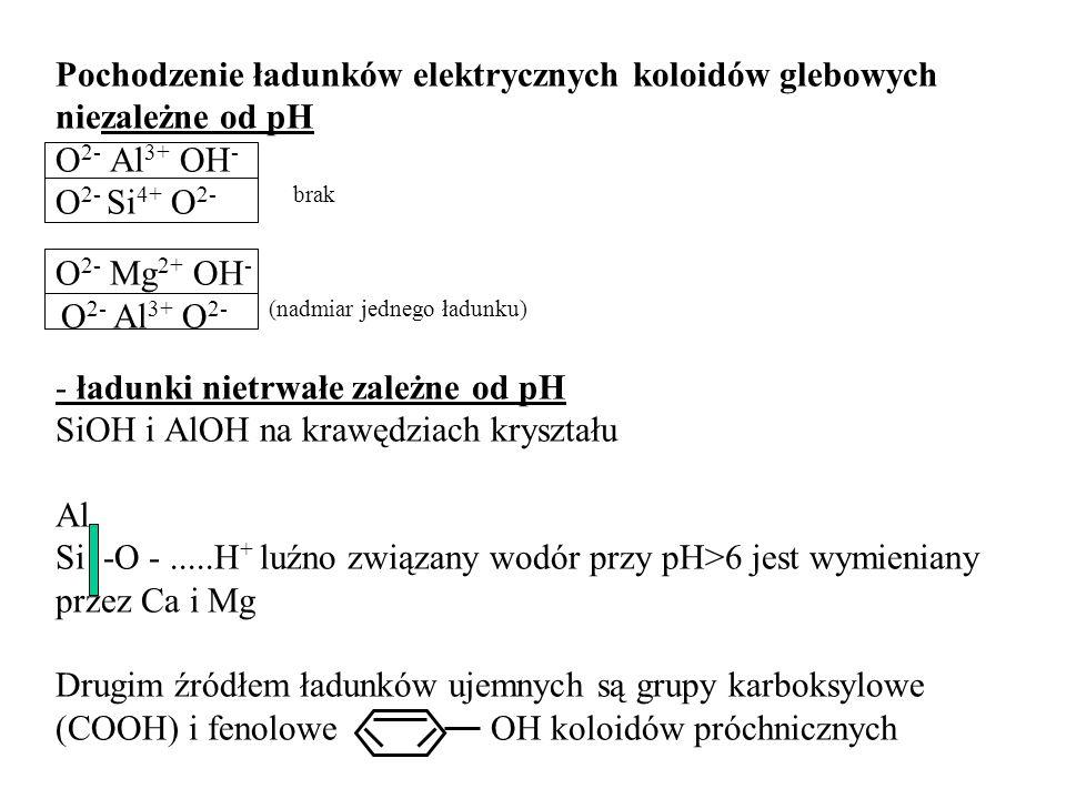 Pochodzenie ładunków elektrycznych koloidów glebowych niezależne od pH O2- Al3+ OH- O2- Si4+ O2- brak O2- Mg2+ OH- O2- Al3+ O2- (nadmiar jednego ładunku) - ładunki nietrwałe zależne od pH SiOH i AlOH na krawędziach kryształu Al Si -O - .....H+ luźno związany wodór przy pH>6 jest wymieniany przez Ca i Mg Drugim źródłem ładunków ujemnych są grupy karboksylowe (COOH) i fenolowe OH koloidów próchnicznych