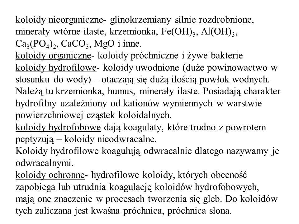 koloidy nieorganiczne- glinokrzemiany silnie rozdrobnione, minerały wtórne ilaste, krzemionka, Fe(OH)3, Al(OH)3, Ca3(PO4)2, CaCO3, MgO i inne.