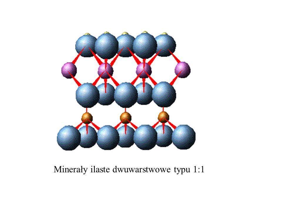 Minerały ilaste dwuwarstwowe typu 1:1