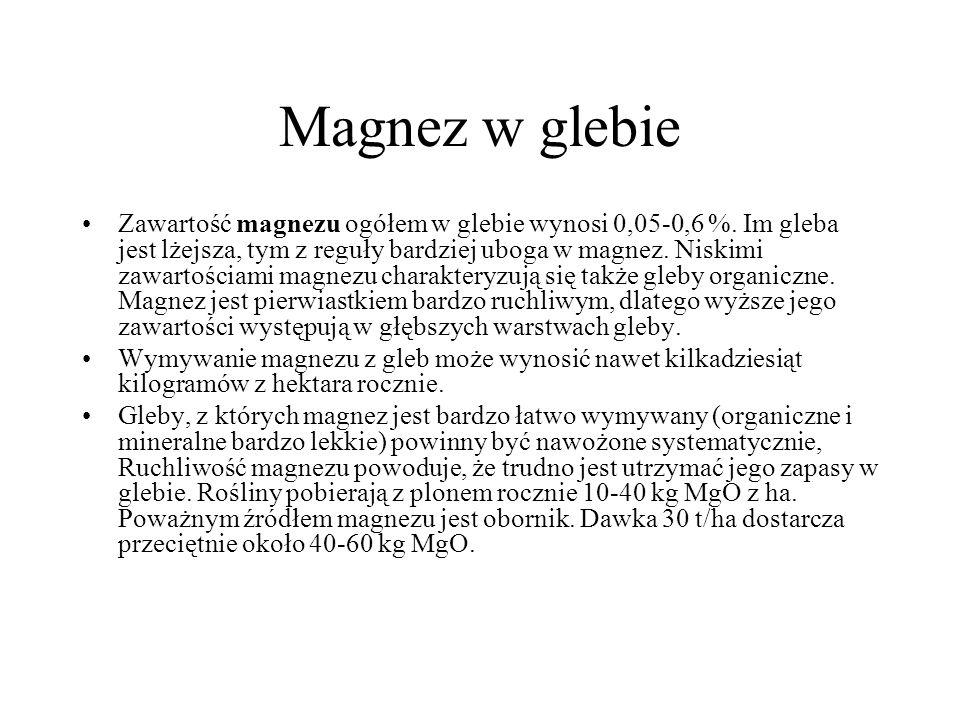 Magnez w glebie