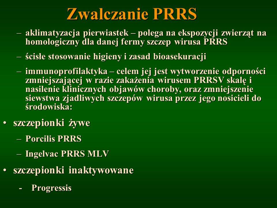 Zwalczanie PRRS szczepionki żywe szczepionki inaktywowane - Progressis