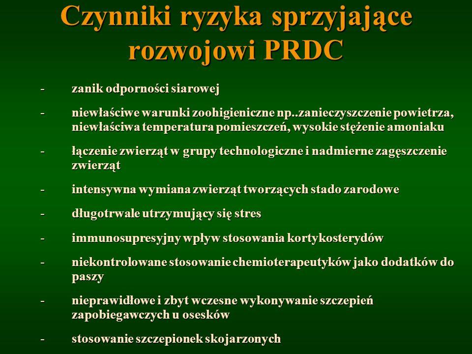 Czynniki ryzyka sprzyjające rozwojowi PRDC