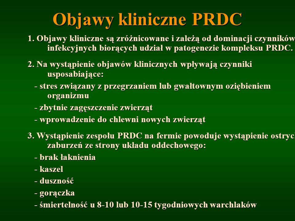 Objawy kliniczne PRDC 1. Objawy kliniczne są zróżnicowane i zależą od dominacji czynników infekcyjnych biorących udział w patogenezie kompleksu PRDC.