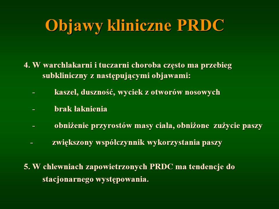 Objawy kliniczne PRDC 4. W warchlakarni i tuczarni choroba często ma przebieg subkliniczny z następującymi objawami: