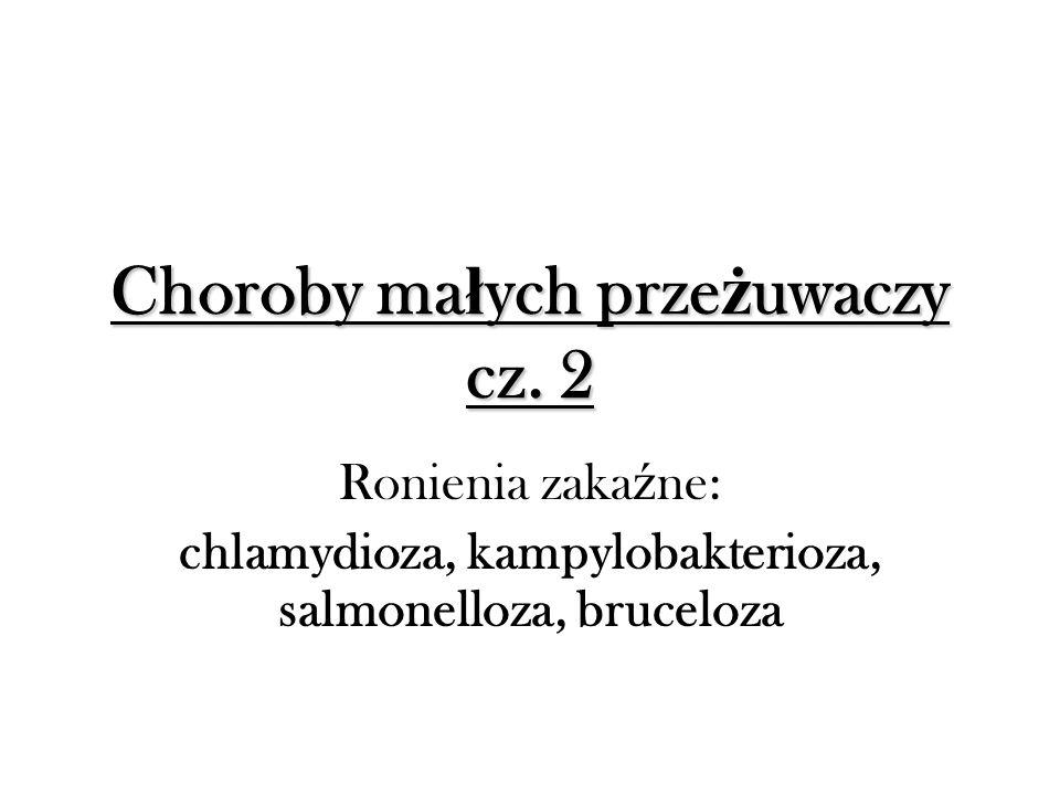 Choroby małych przeżuwaczy cz. 2