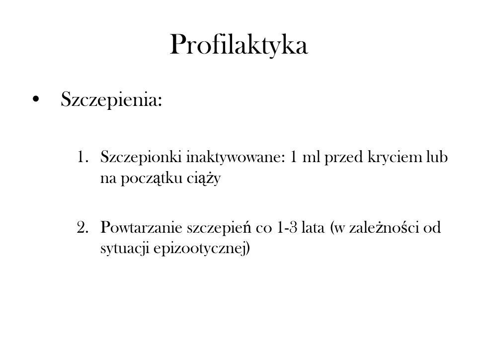 Profilaktyka Szczepienia: