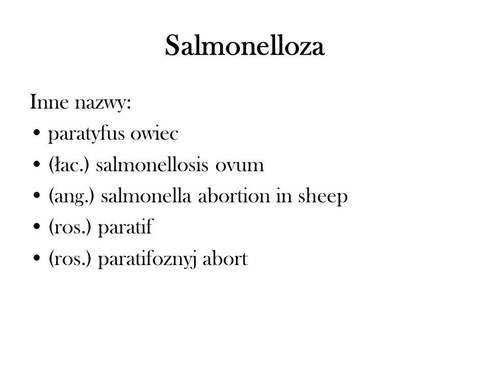 Salmonelloza Inne nazwy: paratyfus owiec (łac.) salmonellosis ovum