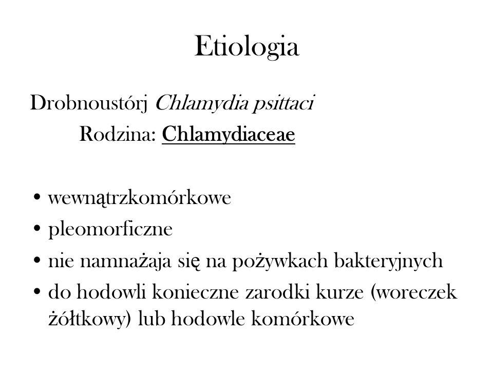 Etiologia Drobnoustórj Chlamydia psittaci Rodzina: Chlamydiaceae