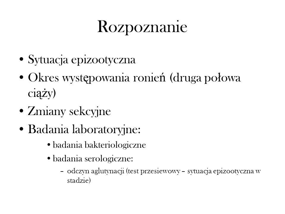 Rozpoznanie Sytuacja epizootyczna