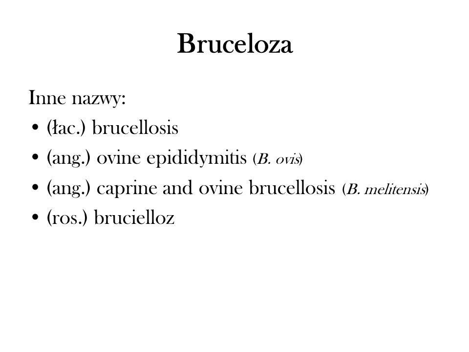 Bruceloza Inne nazwy: (łac.) brucellosis