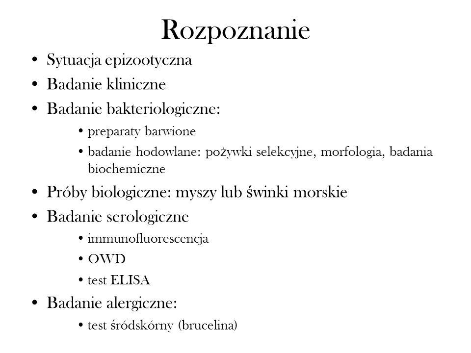 Rozpoznanie Sytuacja epizootyczna Badanie kliniczne