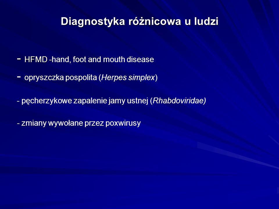 Diagnostyka różnicowa u ludzi