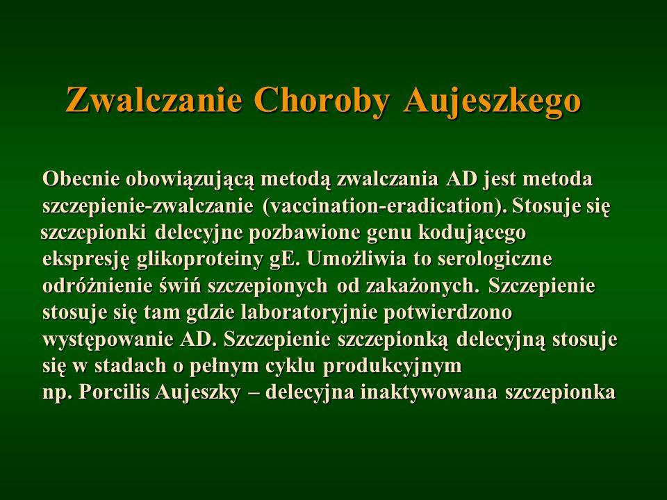 Zwalczanie Choroby Aujeszkego