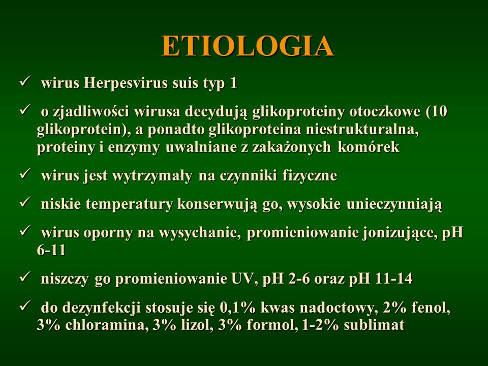ETIOLOGIA wirus Herpesvirus suis typ 1