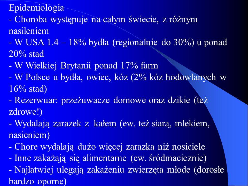 Epidemiologia - Choroba występuje na całym świecie, z różnym nasileniem - W USA 1.4 – 18% bydła (regionalnie do 30%) u ponad 20% stad - W Wielkiej Brytanii ponad 17% farm - W Polsce u bydła, owiec, kóz (2% kóz hodowlanych w 16% stad) - Rezerwuar: przeżuwacze domowe oraz dzikie (też zdrowe!) - Wydalają zarazek z kałem (ew.