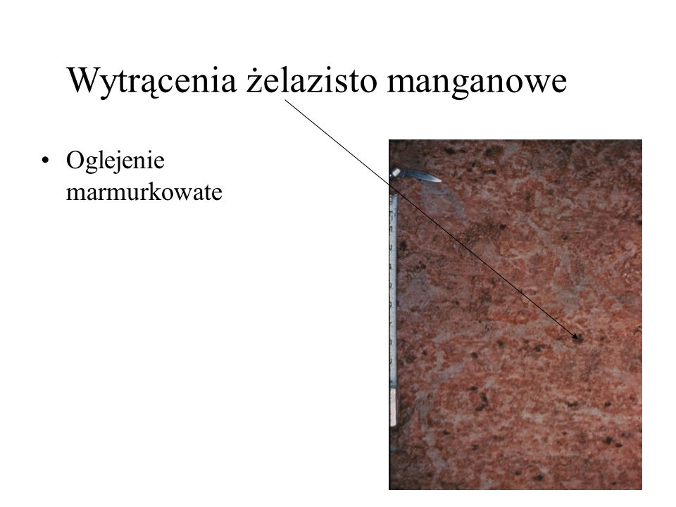 Wytrącenia żelazisto manganowe