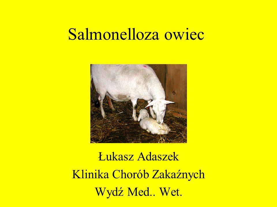 Łukasz Adaszek Klinika Chorób Zakaźnych Wydź Med.. Wet.