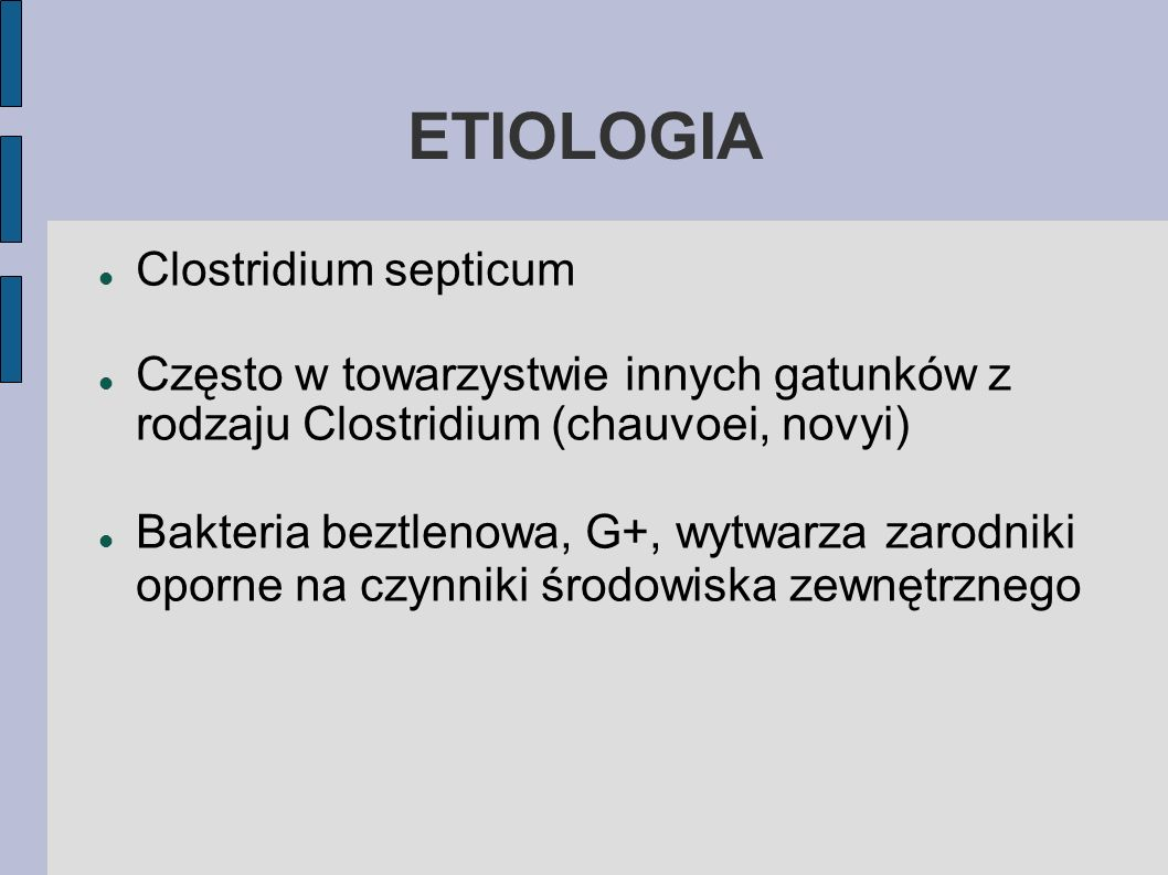 ETIOLOGIA Clostridium septicum