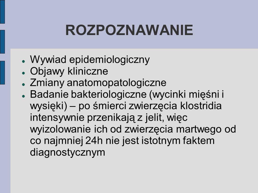 ROZPOZNAWANIE Wywiad epidemiologiczny Objawy kliniczne
