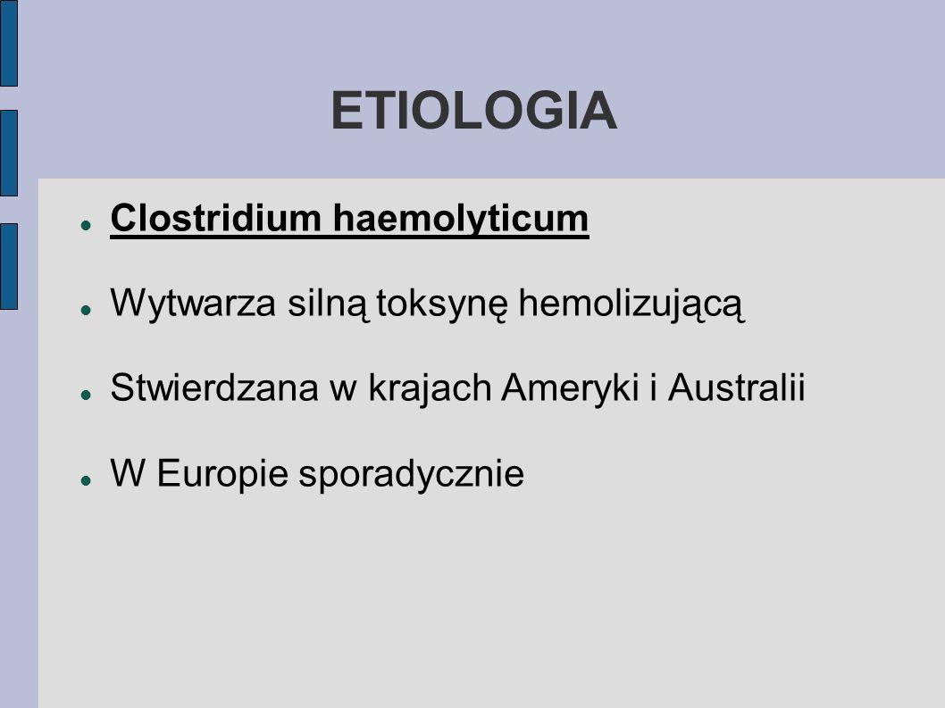 ETIOLOGIA Clostridium haemolyticum Wytwarza silną toksynę hemolizującą